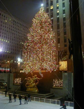 861445 NY Rockefeller Christmas Tree (2)