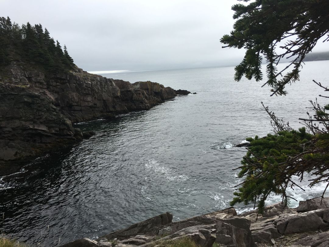 East Coast trail 1